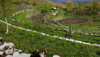 Cultivo En Terrazas Feal Eatlas